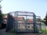 Nordrhein-Westfalen: Gefangener flieht nach brutaler Geiselnahme aus Psychiatrie
