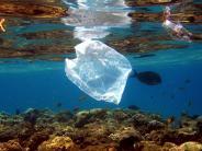 Umweltskandal: Müll im Meer: Wie Verbraucher die Folgen zu spüren bekommen
