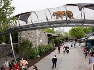 Tierparks: Zoo der Zukunft: Managen Affenihr Affenhaus bald selbst?