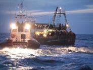 Migration: Bootsdrama: Tunis dementiert Leichenbergung