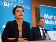 Mitglieder werben für Abwahl: Petition: Zerstrittener AfD-Vorstand soll gehen