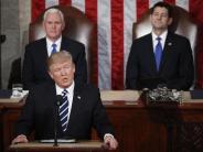 USA: Erste Rede vor Kongress: Donald Trump kann auch anders