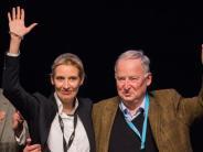 Bundestagswahl 2017: Umfrage: AfD legt trotz Rückzug von Frauke Petry wieder leicht zu