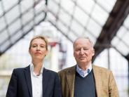 Spitzenduo Gauland und Weidel: Meuthen will AfD nach turbulentem Parteitag befrieden
