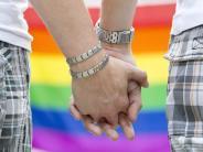 Initiative für Adoptionsrecht: Grüne wollen Abstimmung über Homo-Ehe vor Gericht erzwingen