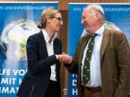 Bundestagswahl 2017: Die AfD verfolgt eine Strategie der gezielten Provokationen