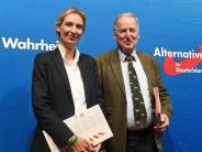 Scharfe Kritik an Weidel: SPD und Union:Verfassungsfeindliche Tendenzen in der AfD