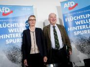 Bundestagswahl 2017: Umfragen sehen AfD vor der Bundestagswahl im Aufwind