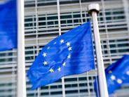 Europa: Späte Regierungsbildung: So lähmt Deutschland die EU