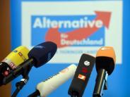Nächstes Ziel heißt CDU: AfD fühlt sich von Umfragewerten beflügelt