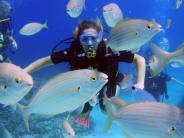 : Paradiesisch: Tauchen auf Mallorca