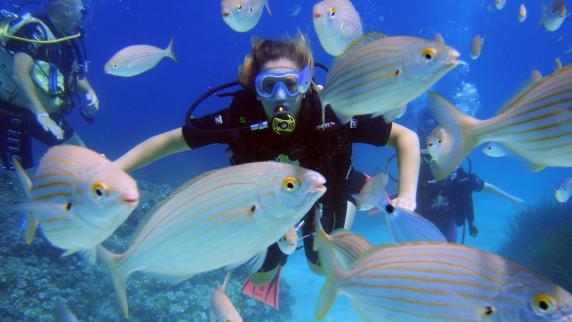 Urlaub in Europa: Paradiesisch: Tauchen auf Mallorca