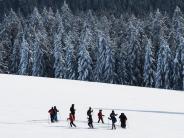 Tourismus: Schwarzwald: Mehr als Kuckucksuhr