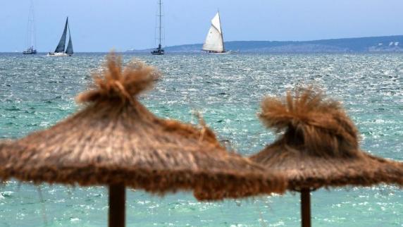 Blauhai erschreckt Badegäste an Mallorcas Westküste