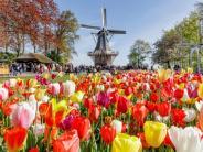 Buntes Programm: Blumenpracht in Holland und Feuerwerk an der Walhalla
