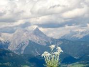 Events für Urlauber: Reisetipps:Wandern in Österreich, Zeitreise in Hessen