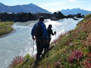 Nationalpark: Zwischen Bären und Beeren - Der Denali in Alaska
