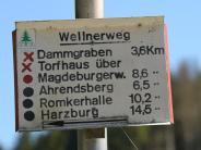 Routen auf dem Prüfstand: Im Harz sollen überflüssige Wanderwege verschwinden