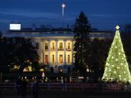 Fernreisen: Weihnachtliches Washington