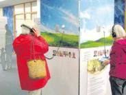 Ausstellung: Plakate zeigen den Weg für die letzten Tage