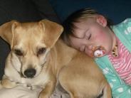 Schwabmünchen: Familienglück mit Hund