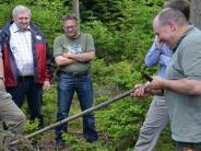 Schwabmünchen: Der Schwabmünchner Wald wandelt sich