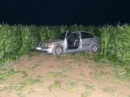 Polizei: Drängler, Diebe und Betrüger unterwegs
