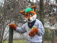 Schwabmünchen: Der Fuchspelz stinkt manchen