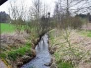 Großaitingen: Fisch soll von der Quelle bis zur Mündung schwimmen