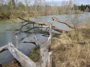 Lechfeld: Lebensräume für schützenswerte Arten