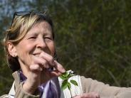 Stauden: Was man aus Frühlingskräutern machen kann