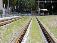 Region Augsburg: Neue Tram-Linie 3 wird deutlich teurer