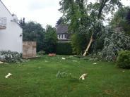 Königsbrunn: Blitz zerfetzt Baum in Königsbrunn