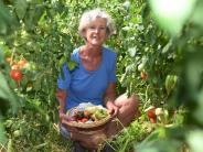 Emersacker: Auf diesem Hof wachsen 66 verschiedene Tomatensorten