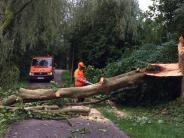 Landkreis: Unwetter wütet in der Region