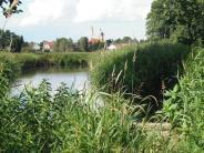 Margertshausen: Mädesüß und Grüne Keiljungfer fühlen sich wohl