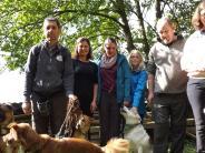 Scherstetten: Das schwere Schicksal der Hunde aus Italien