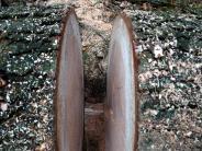 Landkreis: Jetzt liegt ordentlich Holz vor der Hütte