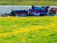 Saison 2017: Die Teams der Formel 1: Toro Rosso