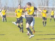 Landesliga Süd: Mit Einsatz aus der Mini-Krise