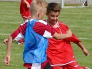 Schulsport: Der Titelverteidiger schafft es in die Finalrunde
