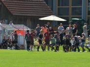 Fußball: Junioren U 14: FC Bayern München gegen VfB Stuttgart in Blindheim