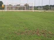 Fußball: Lange Verletztenliste und hungrige Vögel