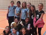 """Volleyball: Voller Einsatz vor """"vollem Haus"""""""