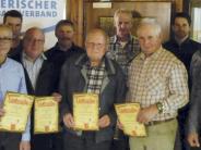 SV Amerdingen: Ehrungen für Mitglieder und den Verein selbst