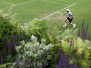 Acht Deutsche im Einsatz: Das bringt der Tag in Wimbledon