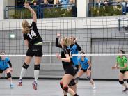 Volleyball: Penzing baut auf die Zuschauer