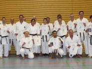 Karate: Mit Ernst und einer Prise Humor