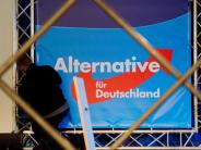 Leichte Sprache: Immer mehr Deutsche unterstützen die AfD-Partei