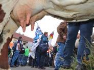 """Milchgipfel: Milchbauern erhalten 100 Millionen """"plus X"""""""